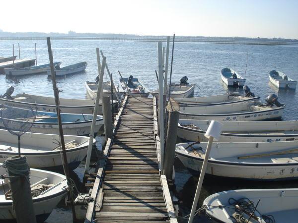 【浜名湖】村櫛の貸船屋さんの和船