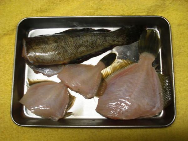 浜名湖 新居海釣り公園で釣れたカワハギとクジメorアイナメをさばいた後